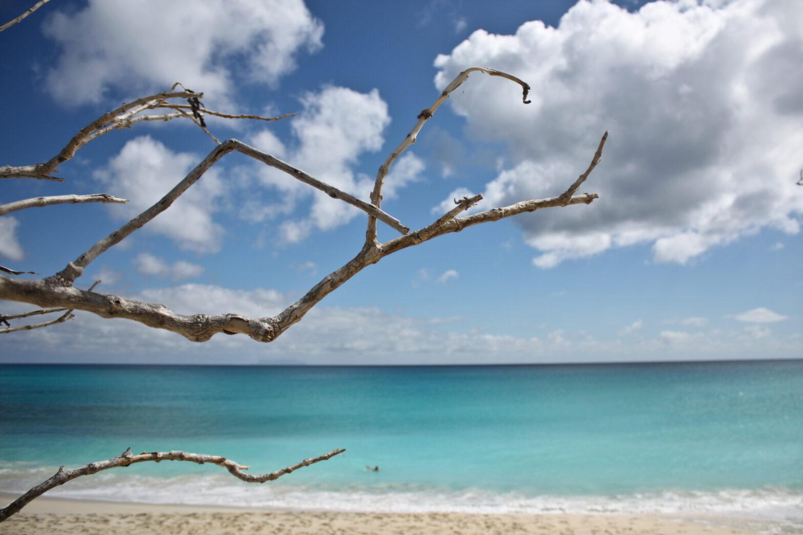 Docabroad Sint Maarten vacature