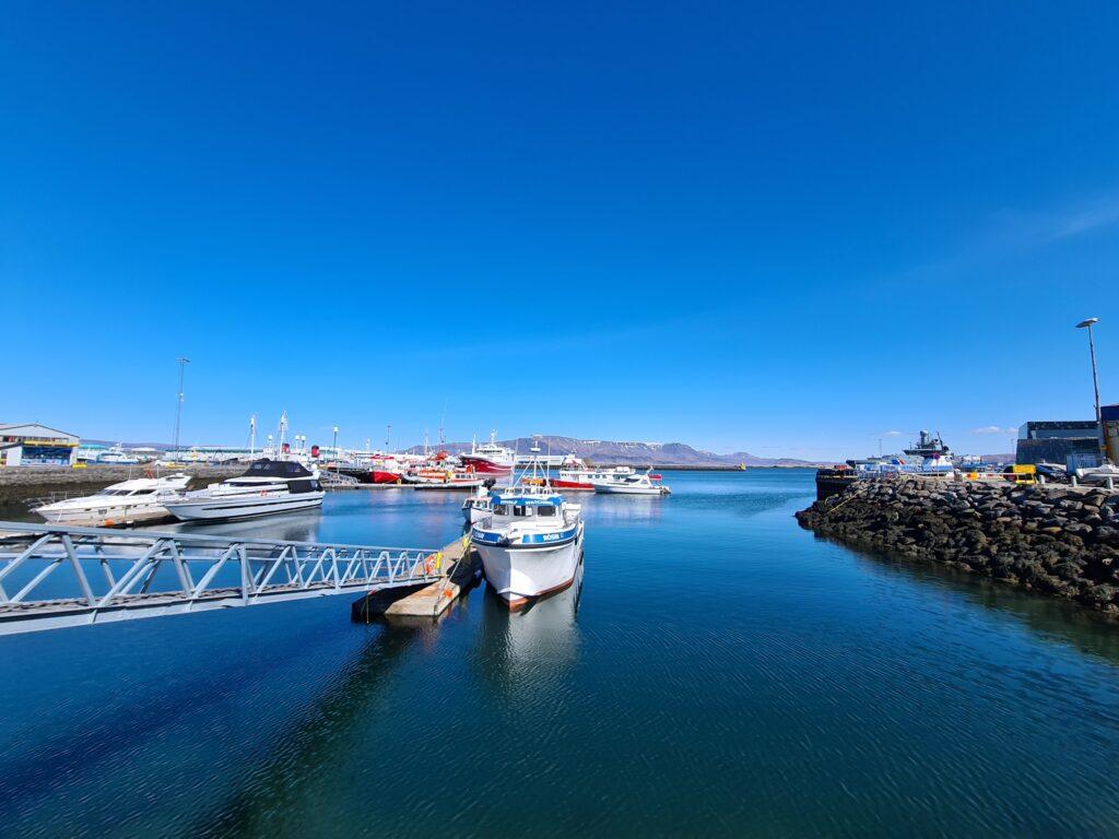 Docabroad IJsland vissersplaatje